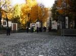 11-11-2012_ministro_profumo_17