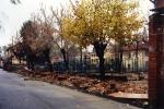 1994-11_alluvione_38