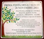 28-11-2011-festa-degli-alberi-1