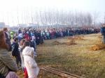 28-11-2011-festa-degli-alberi-4
